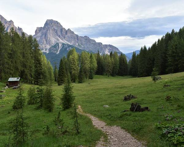 Dolomites Poster featuring the photograph Meadow in the dolomites by Luca Lautenschlaeger