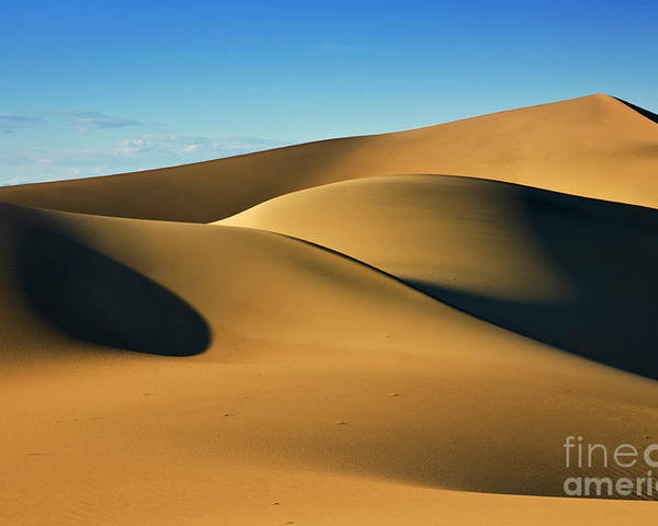 Shadow And Light Poster featuring the photograph Mesquite Flats Sand Dunes, Stovepipe Wells, Death Valley, California, Usa by Neale And Judith Clark