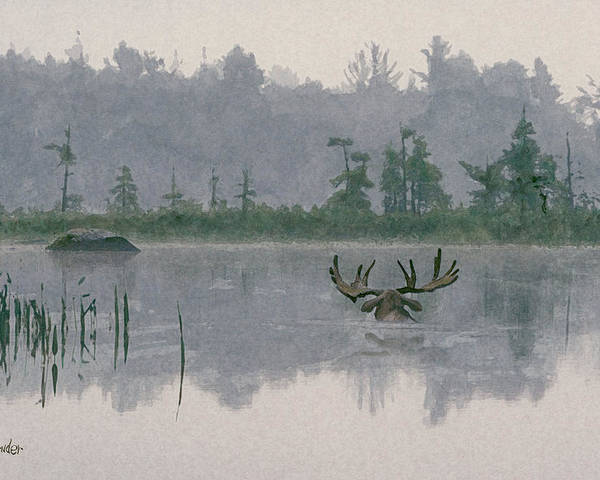 Moose Poster featuring the painting Moose Crossing by Brent Ander