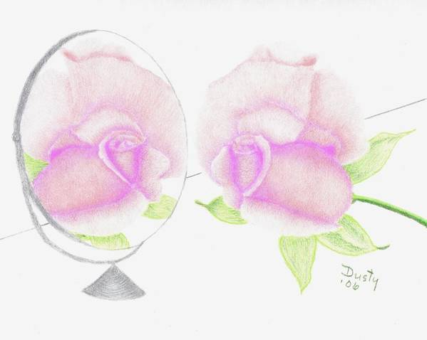 Rose Poster featuring the drawing Pink Reflection by Dusty Reed