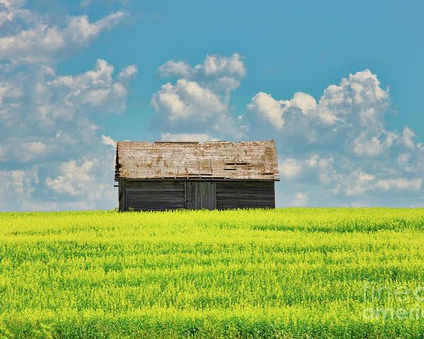 Farm Poster featuring the photograph Prairie Barn by Ian McGregor