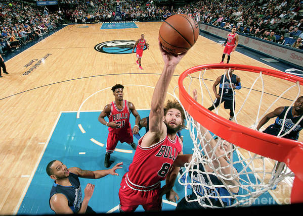 Nba Pro Basketball Poster featuring the photograph Robin Lopez by Glenn James