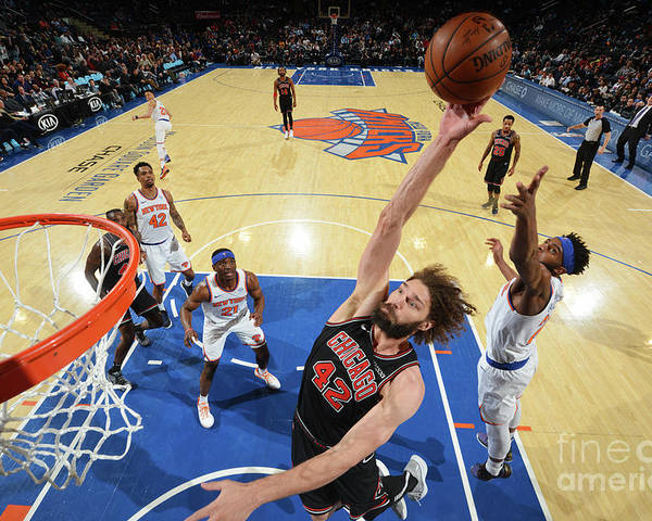 Nba Pro Basketball Poster featuring the photograph Robin Lopez by Jesse D. Garrabrant
