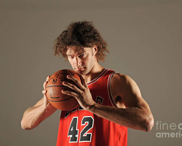 Media Day Poster featuring the photograph Robin Lopez by Randy Belice