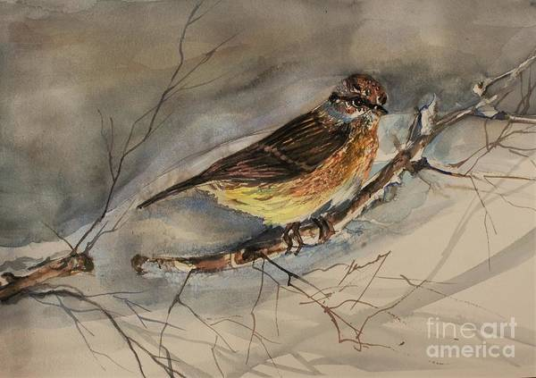Sparrow Poster featuring the painting Snow Sparrow by Mindy Newman