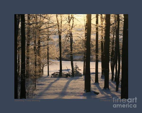 Snow Poster featuring the photograph Sparkling Frosty Morning by Patricia Overmoyer