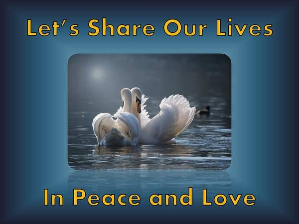 Swans Poster featuring the photograph Swans Peace and Love by Nancy Ayanna Wyatt and PixxlTeufel