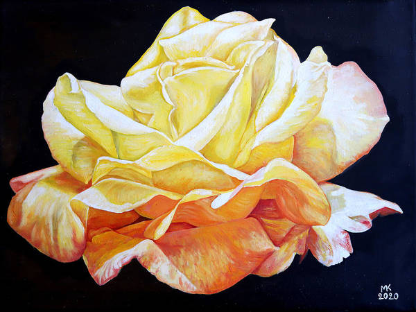 Yellow Poster featuring the painting Yellow Rose by Melvyn Kahan