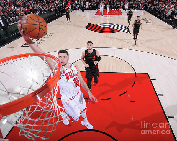 Chicago Bulls Poster featuring the photograph Zach Lavine by Sam Forencich