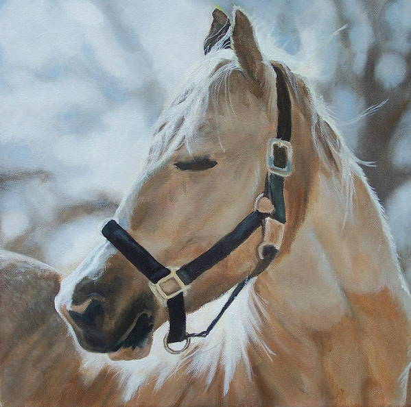 Horse Poster featuring the painting Gabriel by Audrie Sumner