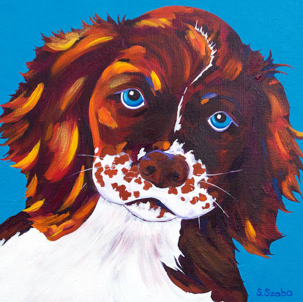 Cocker Spaniel Poster featuring the painting Murphy by Susan Szabo