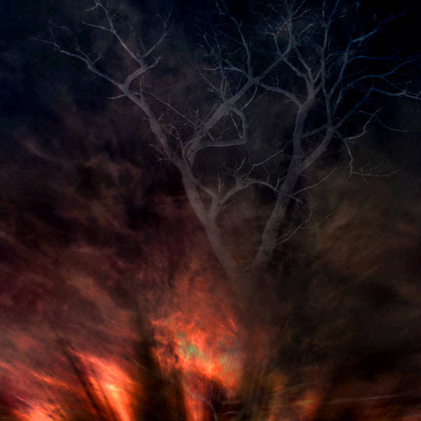 Phoenix Poster featuring the digital art Phoenix One by Randal Bruck