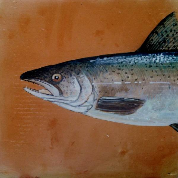Fish Poster featuring the ceramic art Salmon 1 by Andrew Drozdowicz