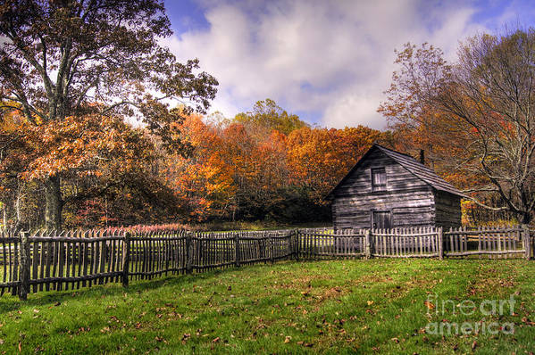 Blue Ridge Parkway Poster featuring the photograph Orlean Puckett's Cabin by Benanne Stiens