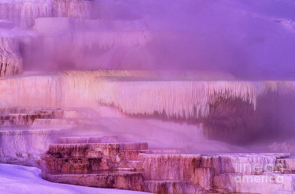 North America Poster featuring the photograph Sunrise At Minerva Springs Yellowstone National Park by Dave Welling