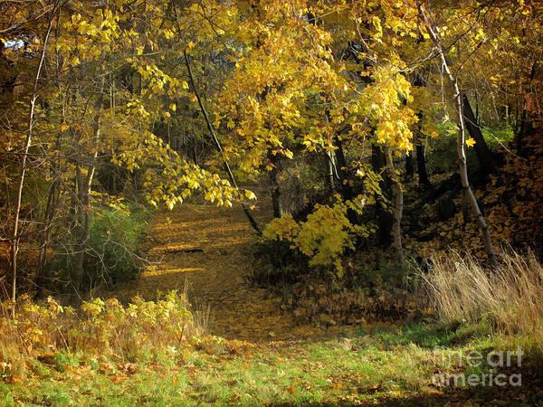 Baar Poster featuring the photograph Autumn Walk by Lutz Baar