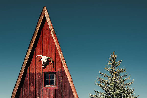 Southwestern Rustic Wall Art Old West Americana Photography Alpine A-Frame Western Cabin Photo Red White Blue Cow Skull Photograph
