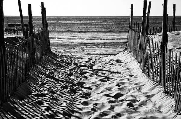 Beach Entry Poster featuring the photograph Beach Entry Black And White by John Rizzuto