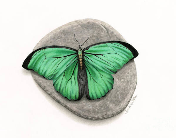 Mito Awareness Butterfly- A Symbol Of Hope by Sarah Batalka