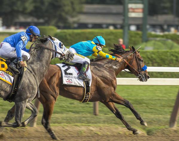 American Pharoah - Travers Stakes 2015 - Saratoga Springs, New York by Styles Bridges