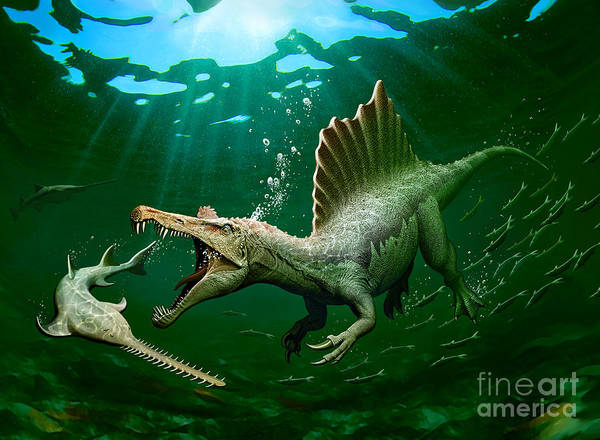 Spinosaurus VS Onchopristis by Mohamad Haghani