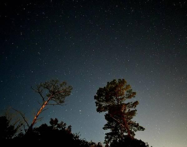 Starry Night by Keri Lee