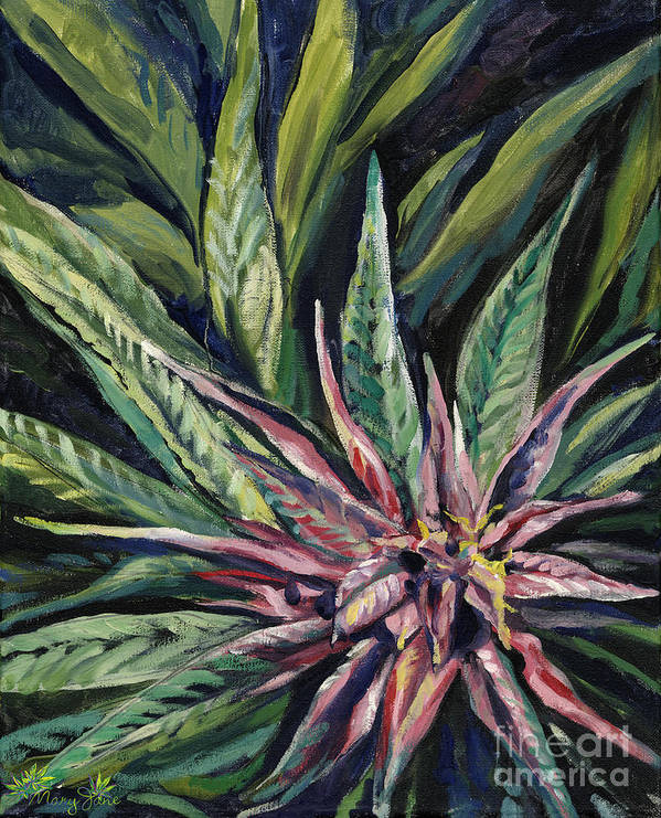 Marijuana Poster featuring the painting Purple Power by Mary Jane