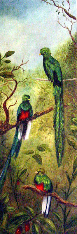 Landscape Poster featuring the painting Quetzels by Anne Kushnick