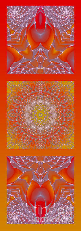 Hanza Turgul Poster featuring the digital art Orange Space Flower by Hanza Turgul