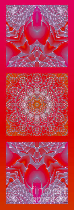 Hanza Turgul Poster featuring the digital art Red Space Flower by Hanza Turgul