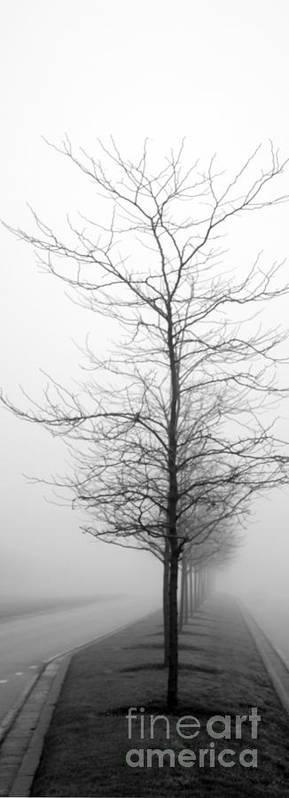 Denver Colorado Poster featuring the photograph Deep Fog by David Bearden