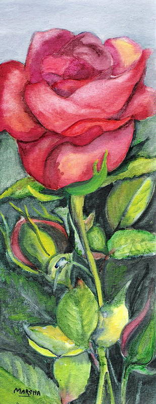 Red Rose Flower Green Painting Watercolor Marsha Poster featuring the painting On A Slender Stem by Marsha Woods