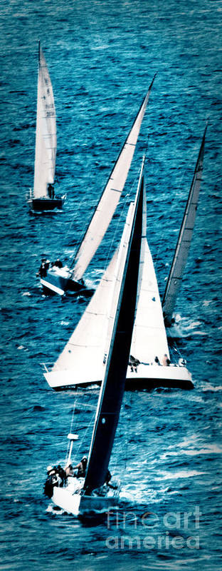 Sailing Poster featuring the photograph Sailing Regatta by Sandy Buckley