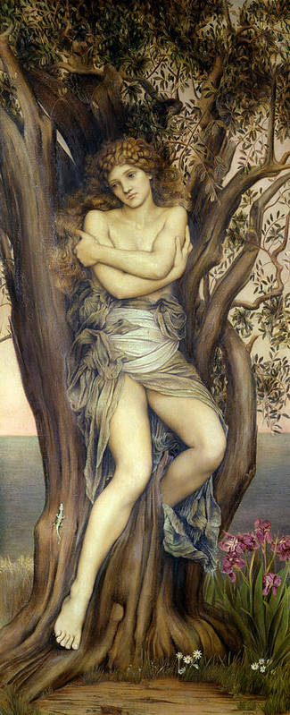 Tree Poster featuring the painting The Dryad by Evelyn De Morgan