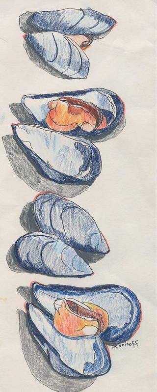 Colored Pencil Poster featuring the drawing Mussels by Jan Bennicoff