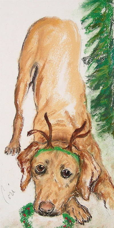 Labrador Poster featuring the drawing Santa's Helper by Cori Solomon