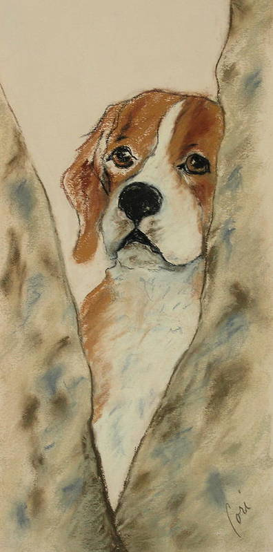 Beagle Poster featuring the drawing Peek A Boo by Cori Solomon