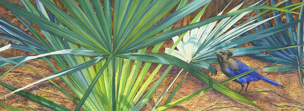 Stellar\'s Bluejay Poster featuring the painting Palmettos And Stellars Blue by Marguerite Chadwick-Juner