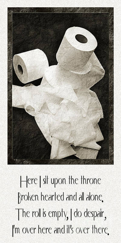 Toilet Paper Poster featuring the photograph Ode To The Spare Roll by Andee Design