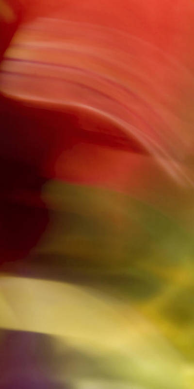 Abstract Poster featuring the photograph Advent II by Margaret Denny