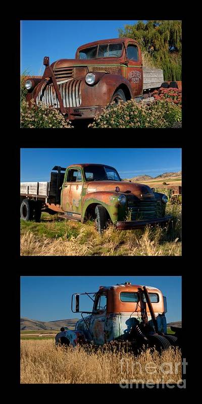 Triptych Poster featuring the photograph Old Guys Trio 4 by Idaho Scenic Images Linda Lantzy