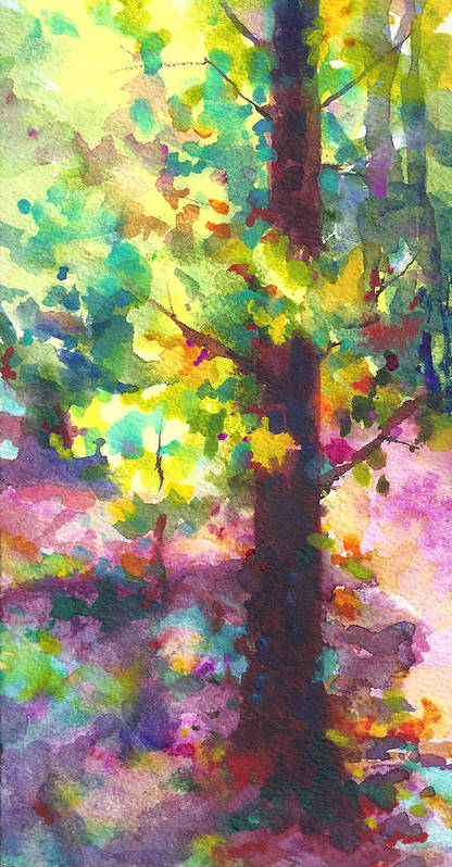 Tree Poster featuring the painting Dappled - Light Through Tree Canopy by Talya Johnson