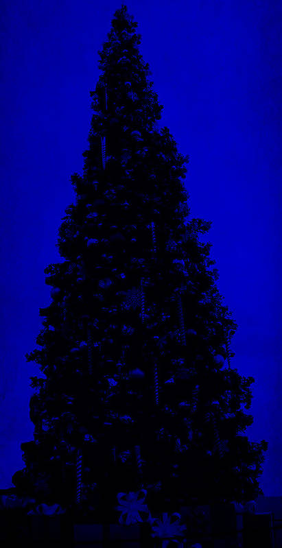 Blue Christmas Poster featuring the digital art Blue Christmas by J Burns