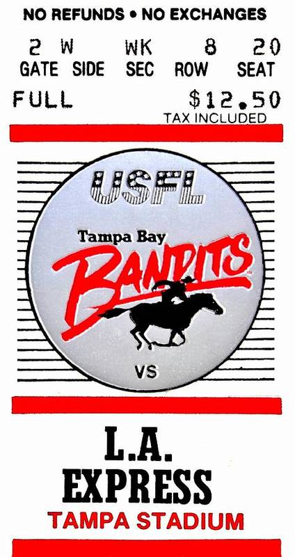 Tampa Poster featuring the photograph Bandit Ball by Benjamin Yeager