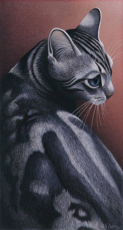 Gray Tabby Cat Poster featuring the painting Cropped Cat 1 by Carol Wilson