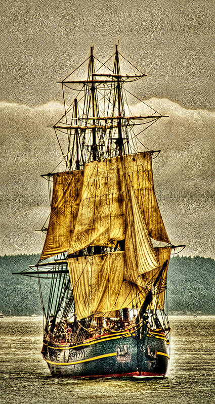 Tall Ships Poster featuring the photograph Hms Bounty by David Patterson