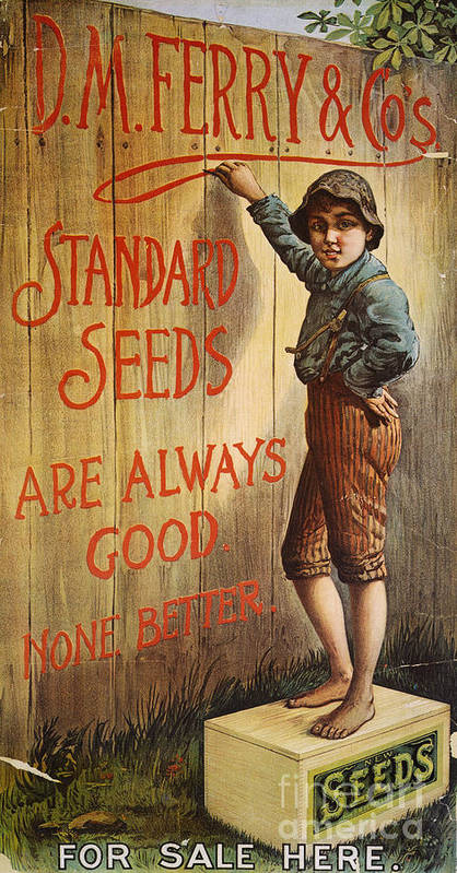 1890 Poster featuring the photograph Seed Company Poster, C1890 by Granger