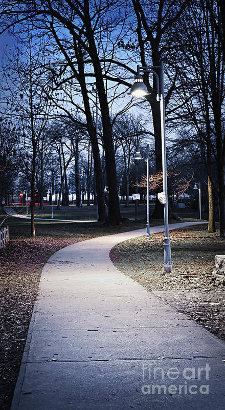 Park Poster featuring the photograph Park Path At Dusk by Elena Elisseeva