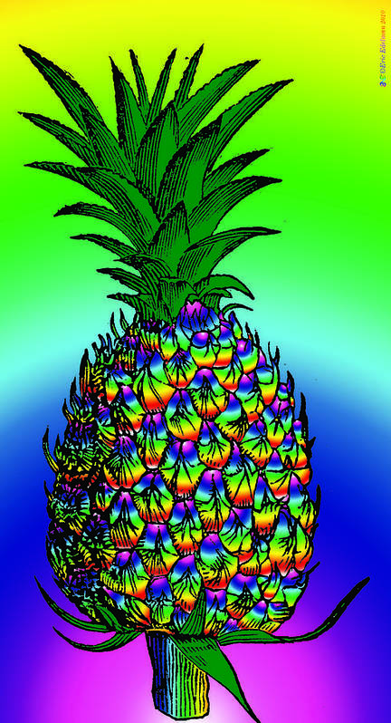 Pineapple Poster featuring the digital art Pineapple by Eric Edelman