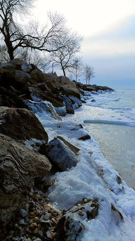 Snow Poster featuring the photograph Winter Beach by Grace Nava